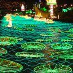La luz de Medellín en Navidad