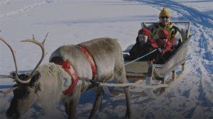 trineo-de-renos-laponia-viajohoy-com Viajar a Laponia en Navidad