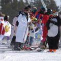carnaval-vallnord-andorra Carnaval en la nieve Vallnord – Andorra