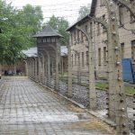 Visita a Auschwitz