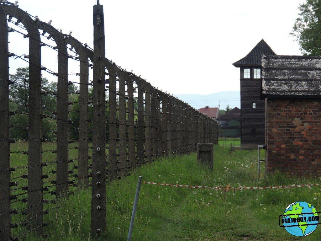 Visita-Auschwitz-viajohoy235 Visita a Auschwitz II (Birkenau)