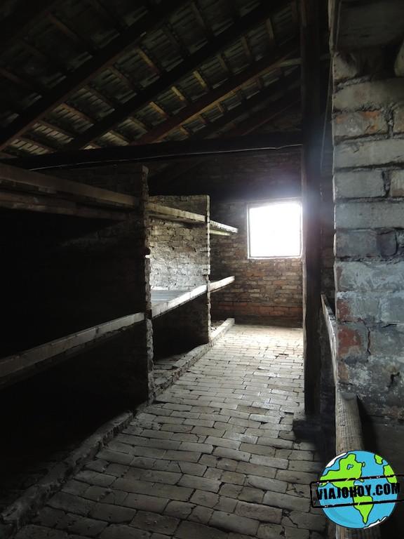 Visita-Auschwitz-viajohoy275 Visita a Auschwitz II (Birkenau)
