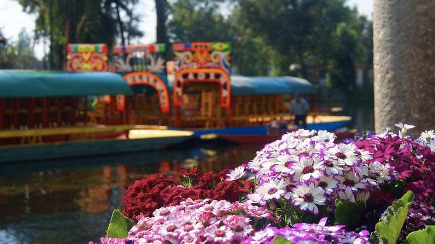 visita-Xochimilco-mexico4 Una Venecia florida – Visita Xochimilco