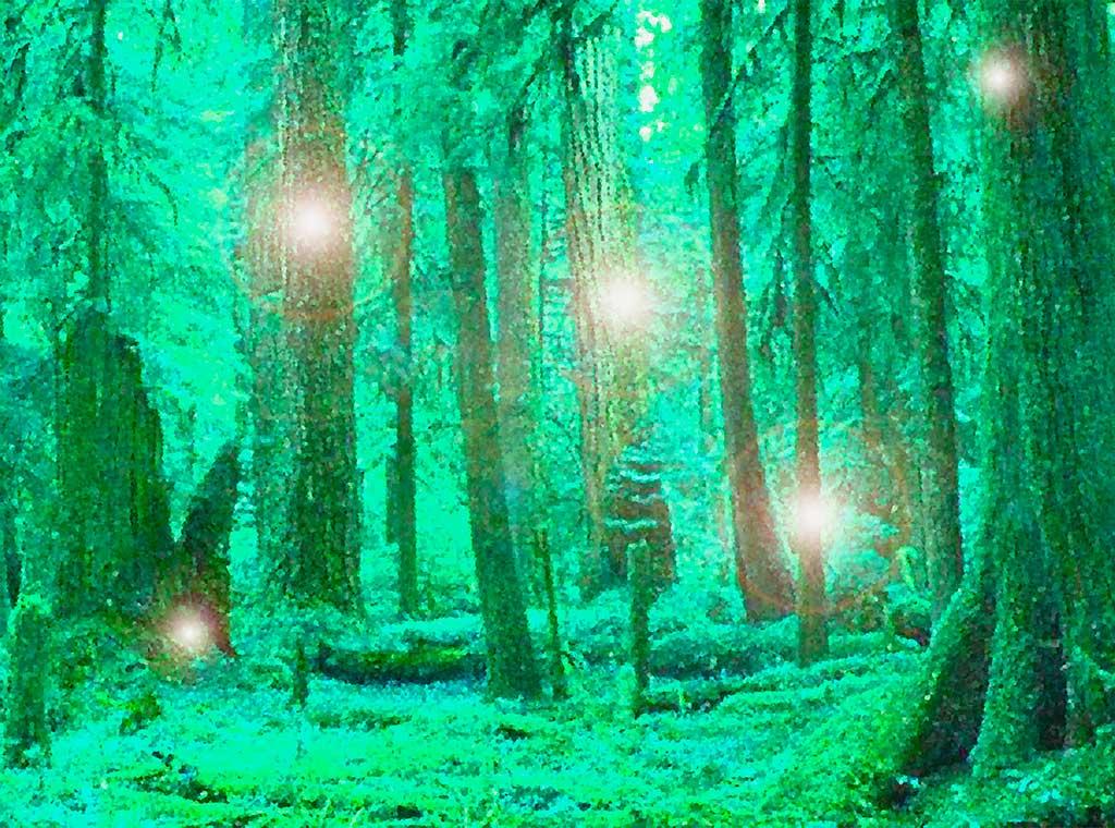 Elfos, duendes y Hadas de Irlanda