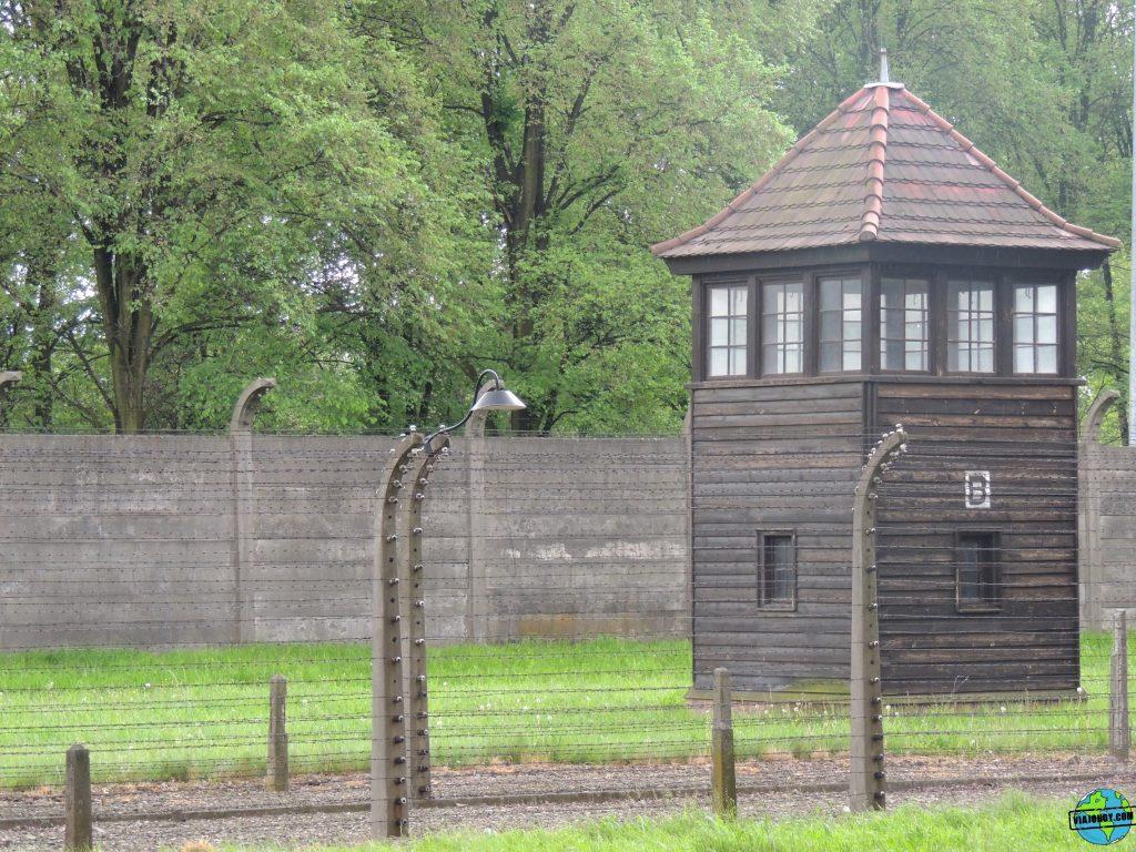 Visita-Auschwitz-viajohoy107