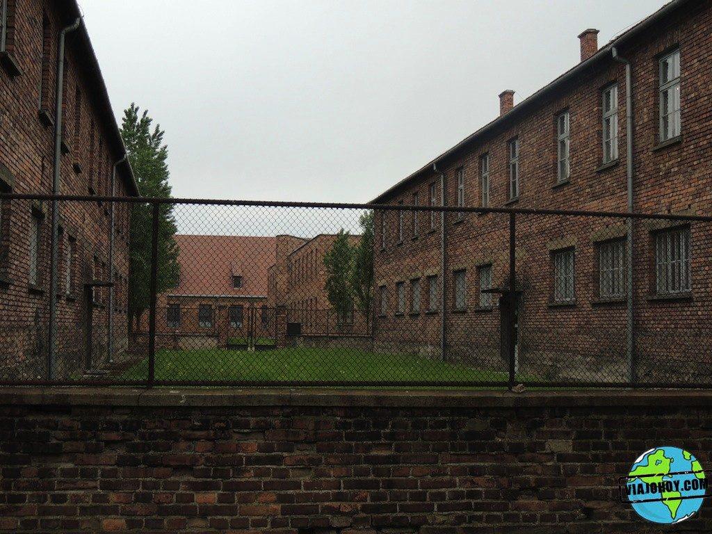 Visita-Auschwitz-viajohoy129