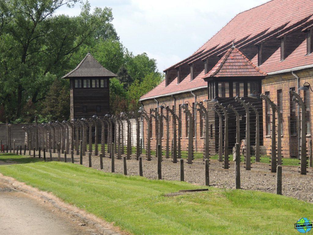 Visita-Auschwitz-viajohoy54